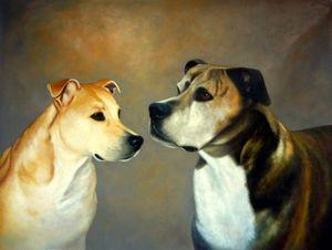 Pet portrait - dog #033