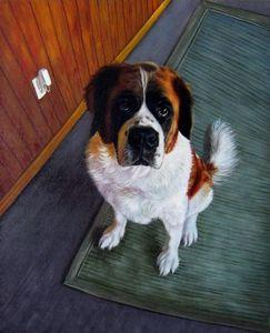 Pet portrait - dog sample 034