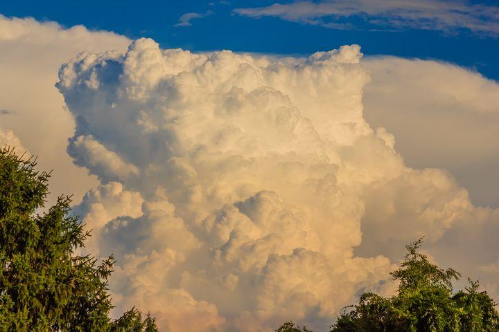 a cauliflower-shaped cloud formation - susanna mattioda