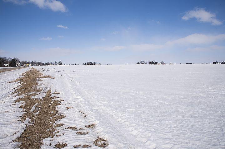 Snow . Field - Tian's Gallery