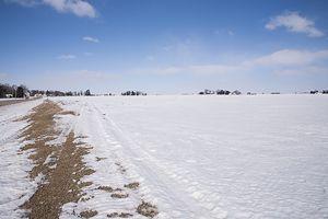 Snow . Field