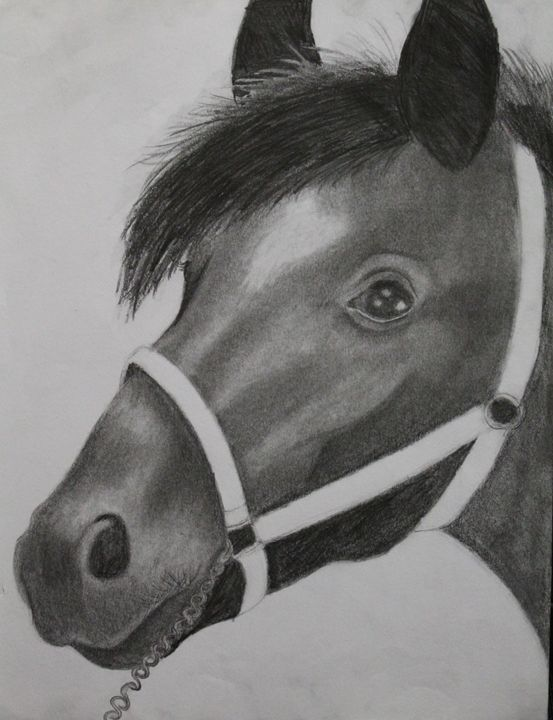 Horse - Graceful Creations