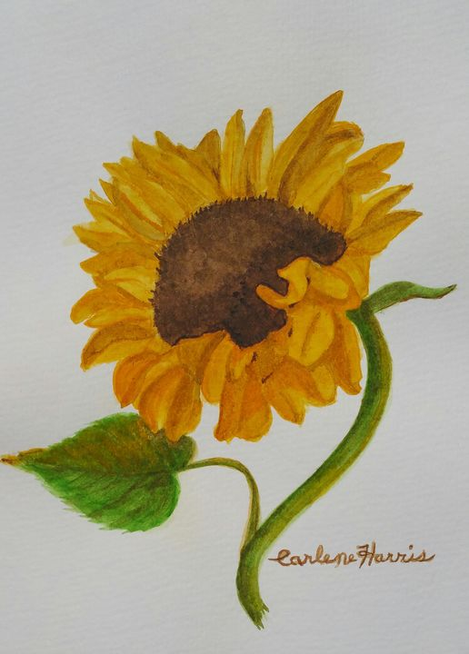 Dance Of The Sunflower - Fun With Art