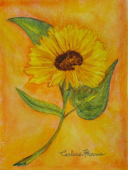 Sunflower - Fun With Art