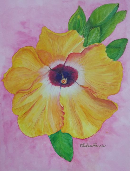 Yellow Hibiscus - Fun With Art