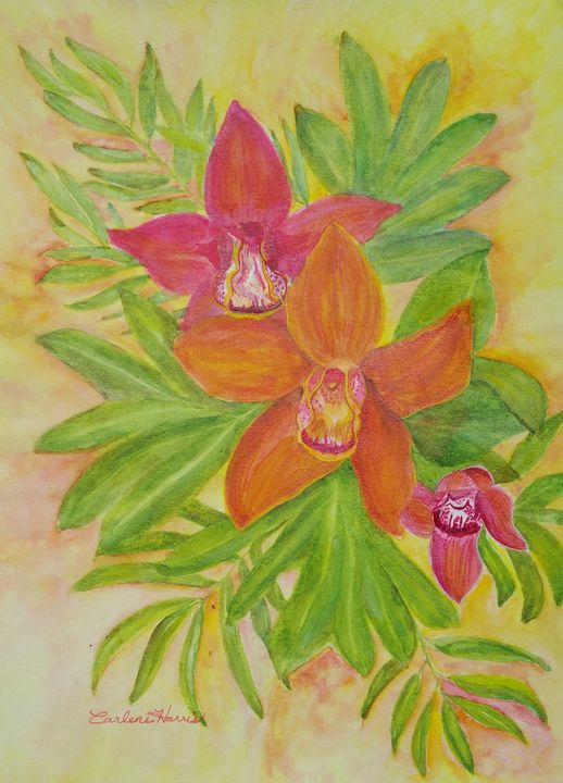 Orchid In Spring - Fun With Art