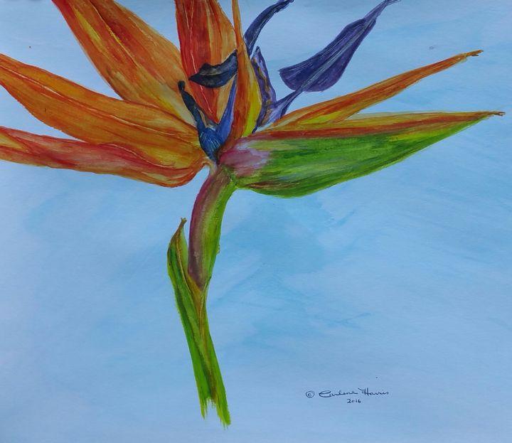 Bird of Paradise - Fun With Art