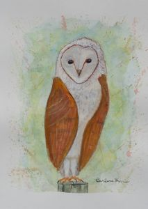 Barnie The Barn Owl