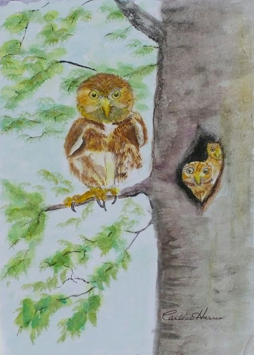 Mamma Owl And Babies - Fun With Art