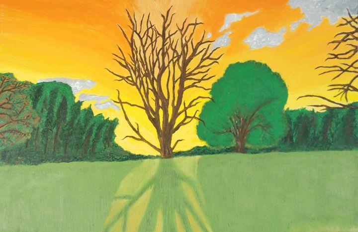 Shouldice Tree - Narcoplexic