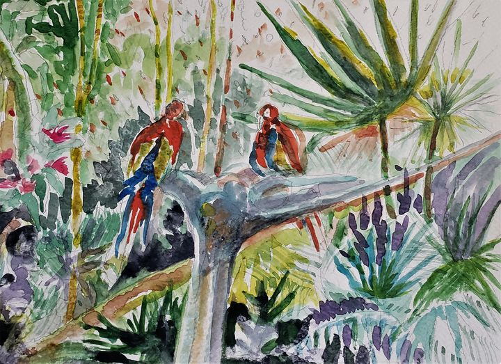 Parrots - Rob Menter Fine Art