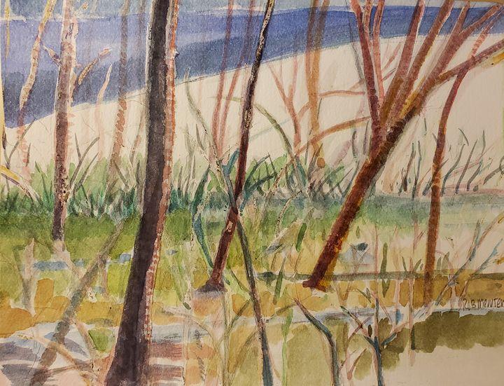 Swamp Hill - Rob Menter Fine Art