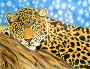 Leopard in Colored Pencil
