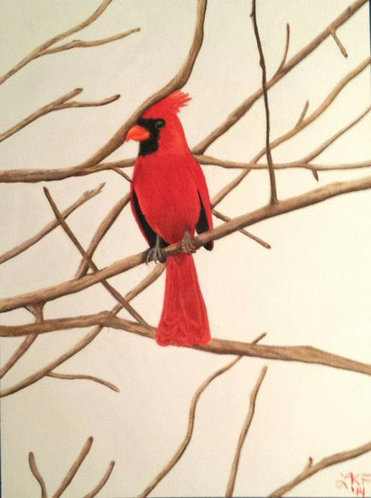 Red Cardinal - Lynda Freeman