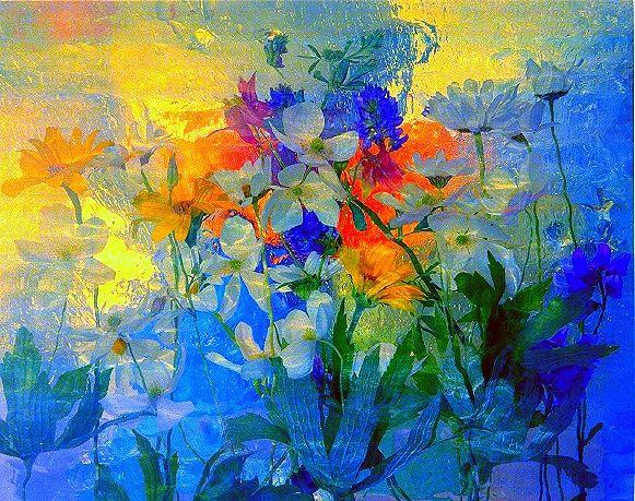 Wild Flower Series 02 - andrzej pluta