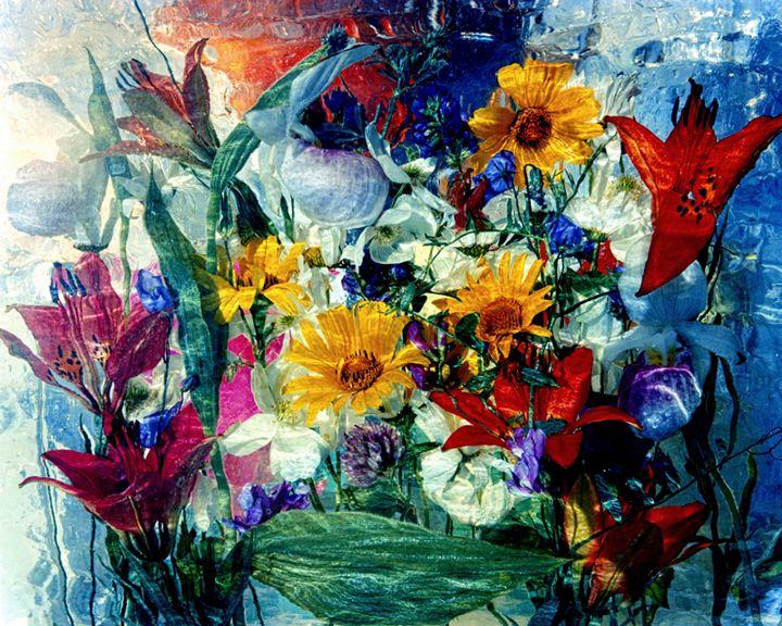 Wild Flower Series 7 - andrzej pluta