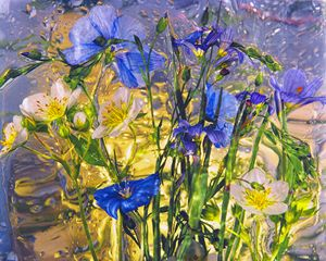 Wild Flower Ice Series 5