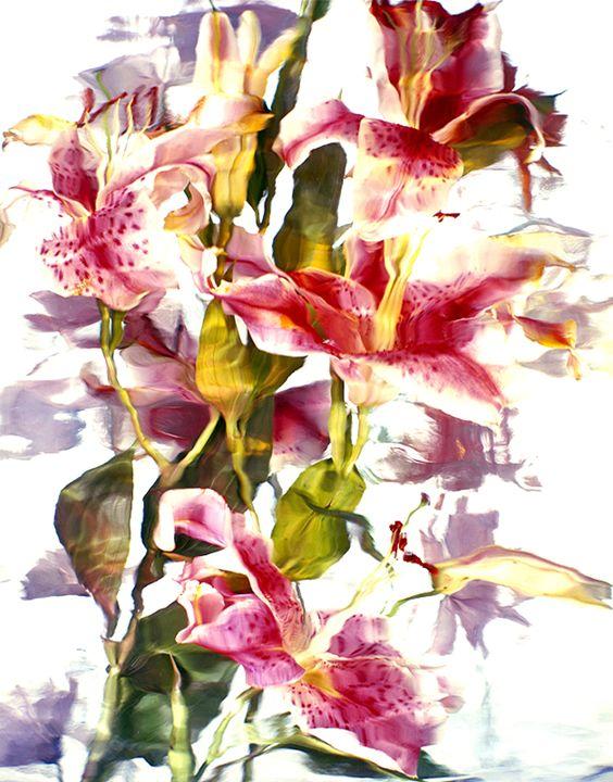 Wild Flower Ice Series 3 - andrzej pluta