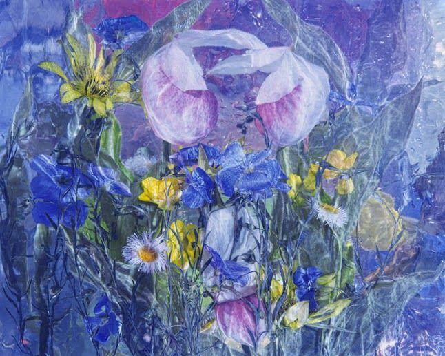 Wild Flower Series 016 - andrzej pluta