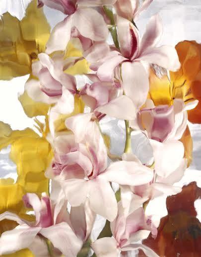 Wild Flower Series 11 - andrzej pluta