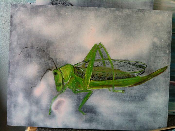 "bug series ""Cricket2 -  Anouschka"