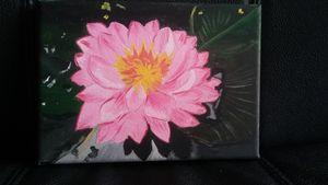 Pink lotus flower in water