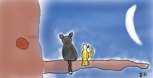 Midnight Friendship