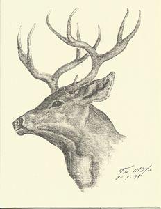 Deer 1 card