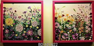 BD- A 21 & A 22