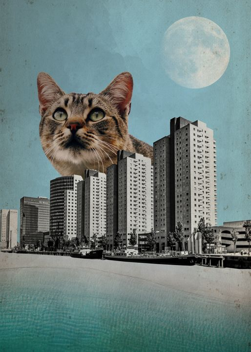 Cat City - Karoline Stock