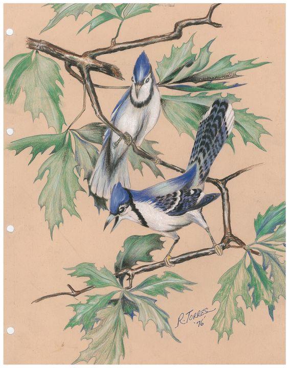 "'' 2 blue birds "" - R. TORRES  GALLERY"