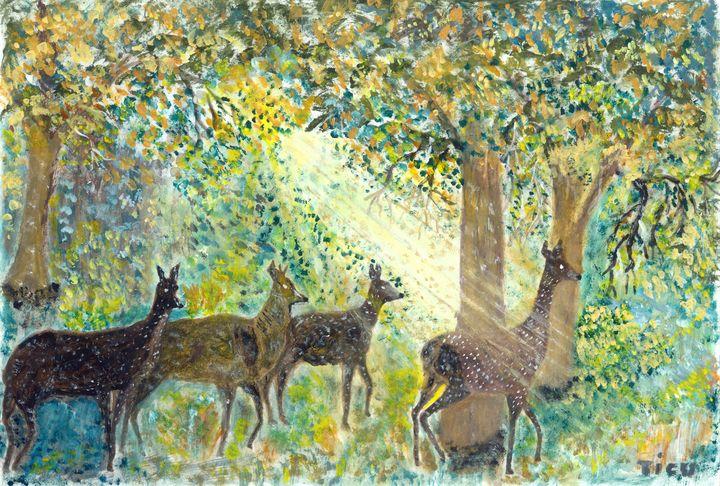 Adorable deers - TICU