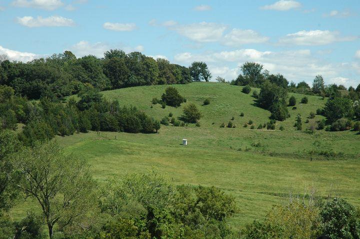 Blue sky's green rolling hills - Hidden Mouse Art