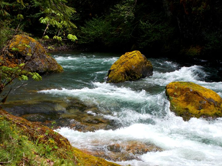 Greenwaters Park- Running River - Su Stella