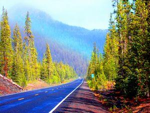 Magic Oregon Rainbow Road