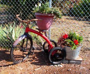 Little Red Trike - Westfir Oregon