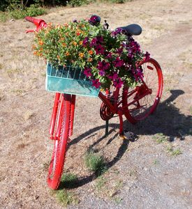 Red basket Bike- Westfir Oregon