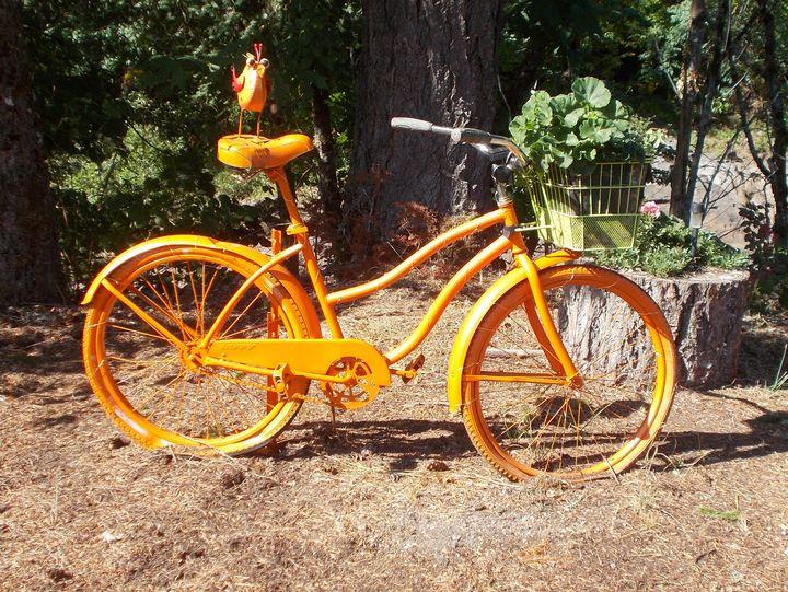 Sunny Morning Bicycle - Su Stella