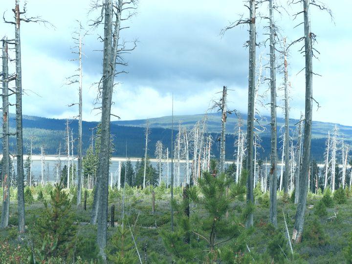 Cascade Lakes Scenic Byway- - Su Stella