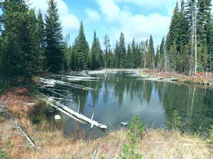 Cultus River, Oregon