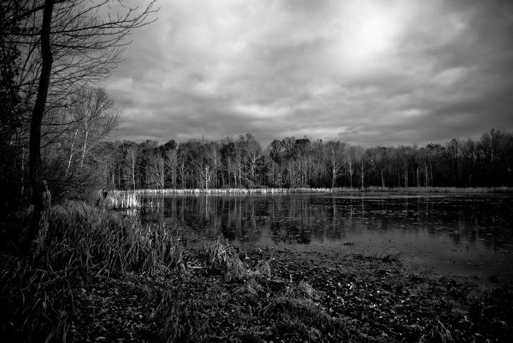 Somewhere Off Duck Lake Road - Steve Saile