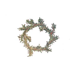 Holiday Holly Wreath - Kolors By Kat