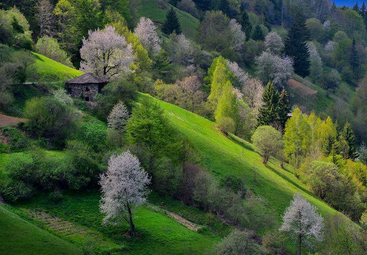 Bulgarian mountain - Nature
