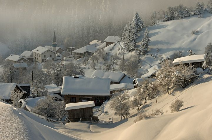 Winter in Bulgaria - Nature
