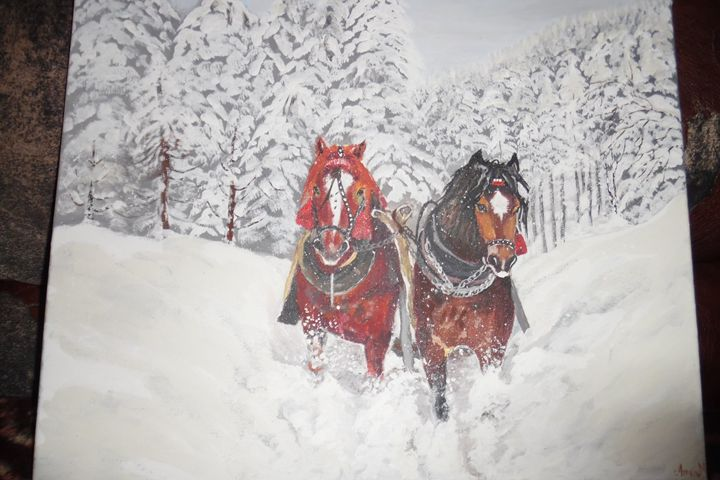 horse in the snow - amra