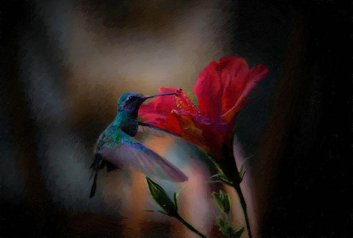 hibiskissed - ezdrifter's artwork