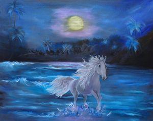 Stallion in the Moonlight