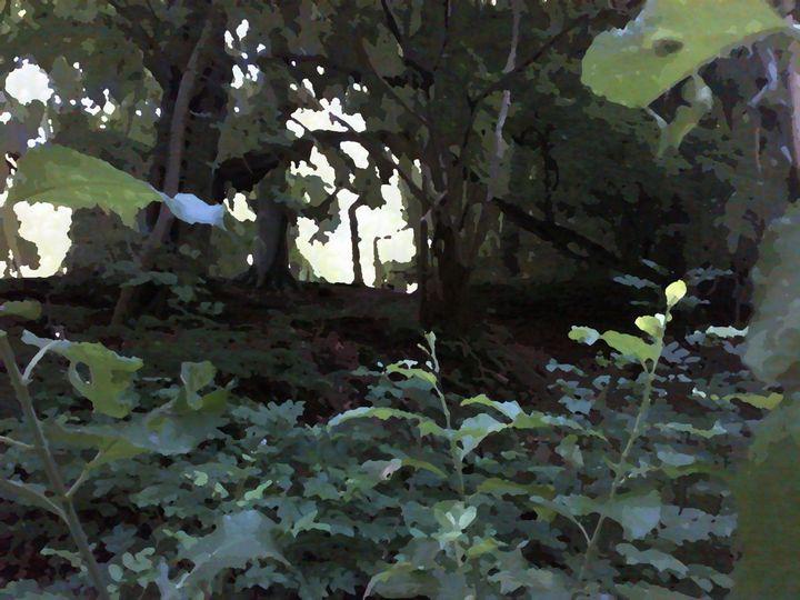 SpyinTheForest - JmRip24