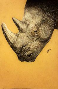 realistic charcoal rhino