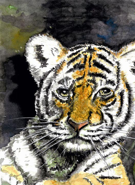tiger cub - Phil Willetts